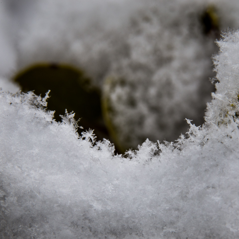 Macro Close-up of Snow