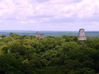 View from atop Temple 4, Tikal.