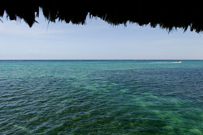 View from the Palapa Bar.