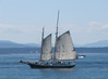 whale watching excursion from Anacortes, San Juan Islands, Washington and Britisch Columbia