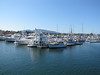 harbour of Anacortes, Washington