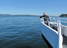 Viewing on the stem of the whale watching boat, Anacortes, San Juan Islands, Washington and Britisch Columbia