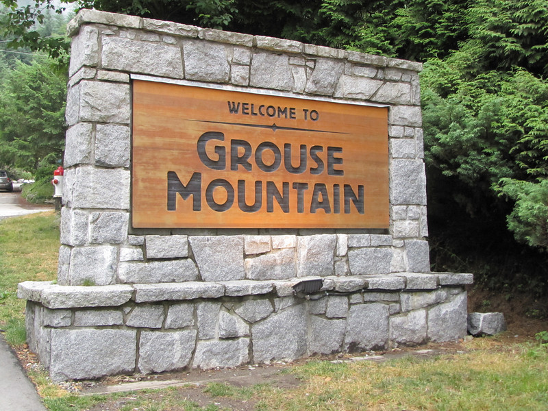 Grouse Mountain, North of Vancouver, a living area of the Grizzly Bear, Canada