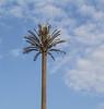 Antenne-tree