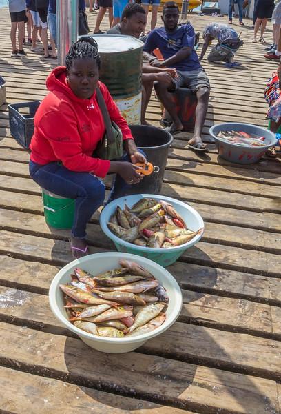 fresh fish sales