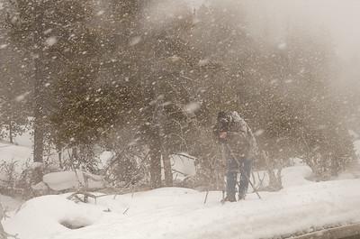 Dale's Yellowstone Blizzard
