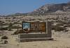 Parque Nacional Llanos de Challe, Atacama desert, Atacama