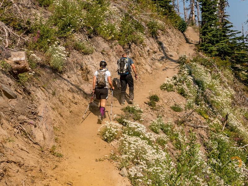 Coe Creek Falls 8-27-17 57