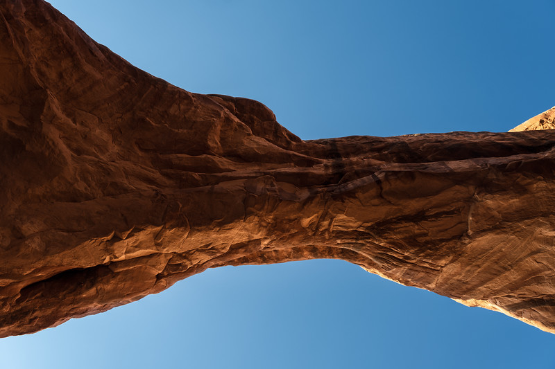 Looking Up, Arches National Park