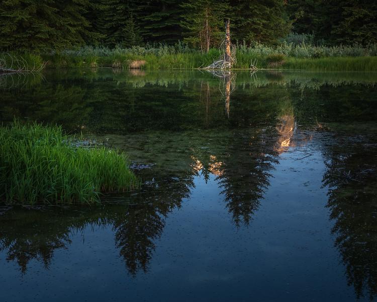 Morning Stillness, Grand Teton National Park
