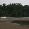 Rio-Claro_Osa-Peninsula_CostaRica_6220