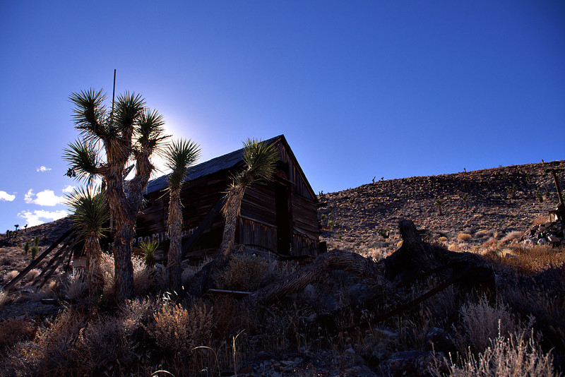 The Lost Burro Mine resides in a canyon that drains into Hidden Valley in the NW part of the NP.