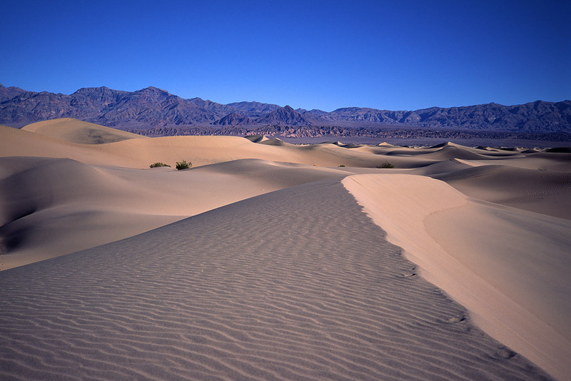 The Death Valley Dunes lie in the center of the NP.