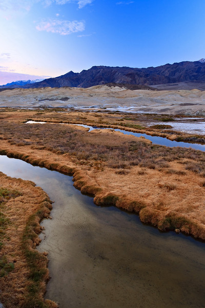 <em>Salt Creek</em> Death Valley National Park Copyright 2007, Ken Walsh