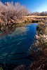 <em>Ash Meadows</em> Copyright 2009 Ken Walsh
