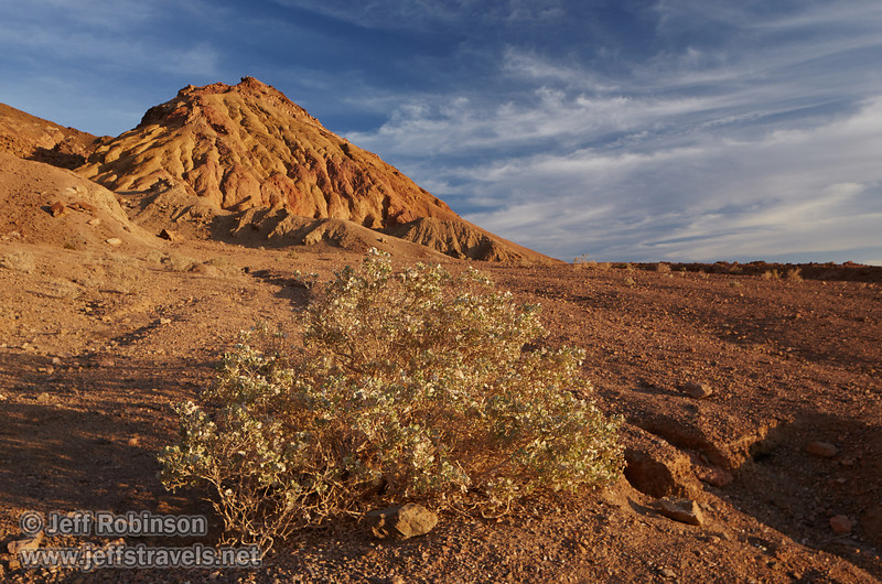 A light-green bush in the foreground leads to a textured hill of reds and browns under partly-cloudy blue sky.(3/17/2013, Artists Drive Loop, Death Valley NP)<br /> <br /> TS-E24mm f/3.5L II @ 24mm f/8 1/200s ISO500