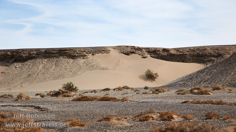 A sand dune on the side of the valley, with a bush and some texture visible. (3/19/2013, Salt Creek Trail, Death Valley NP)<br /> EF24-105mm f/4L IS USM @ 105mm f/8 1/400s ISO100