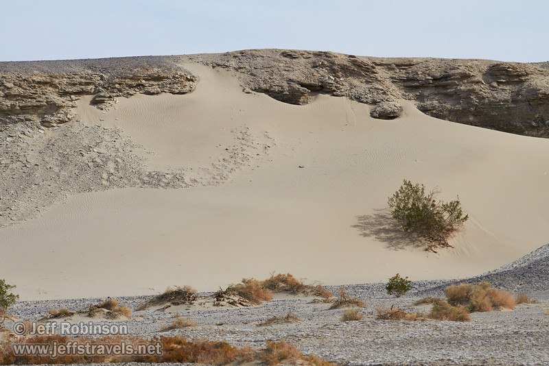 A sand dune on the side of the valley, with a bush and some texture visible. (3/19/2013, Salt Creek Trail, Death Valley NP)<br /> EF100-400mm f/4.5-5.6L IS USM @ 150mm f/8 1/800s ISO400