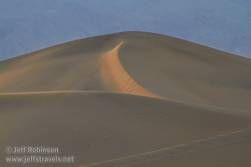 The last bits of sun light up the textured sand on some of the larger of the Mesquite Flat Sand Dunes.(3/19/2013, Mesquite Flat Sand Dunes, Death Valley NP)<br /> EF100-400mm f/4.5-5.6L IS USM @ 260mm f/6.3 1/250s ISO400