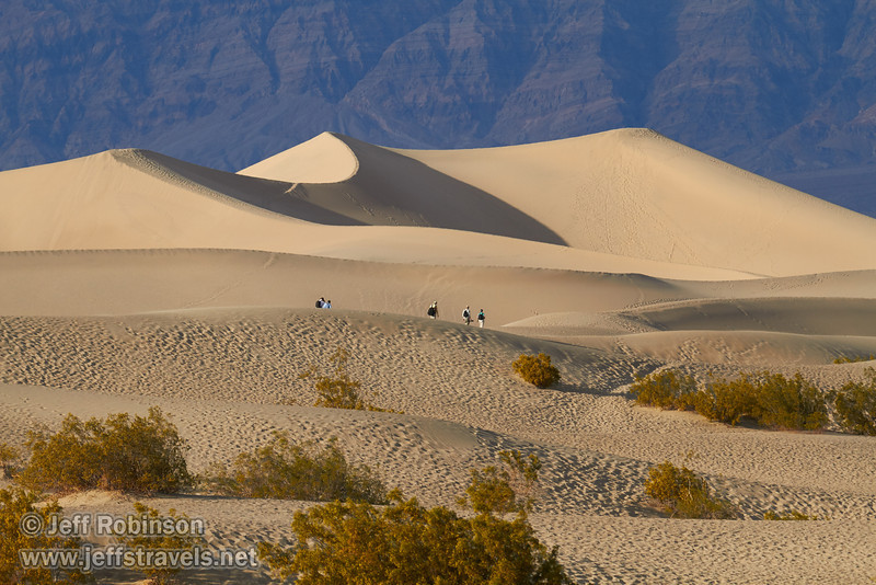People walk on the nearer sand dunes, with the largest of the Mesquite Flat Sand Dunes beyond, and the Grapevine Mountains of the Amargosa Range in the background. Many creosote bushes are in the foreground. (3/19/2013, Mesquite Flat Sand Dunes, Death Valley NP)<br /> EF100-400mm f/4.5-5.6L IS USM @ 190mm f/8 1/640s ISO400