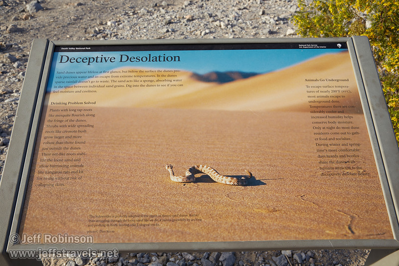 """""""Deceptive Desolation"""" sign, including the photo of a sidewinder rattlesnake. (3/19/2013, Mesquite Flat Sand Dunes, Death Valley NP)<br /> EF24-105mm f/4L IS USM @ 32mm f/9 1/200s ISO200"""