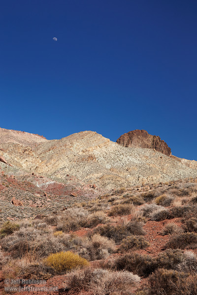 A foreground of desert plants in their pale greens and yellows growing in red dirt leads to a mountain with hues of greens, yellows, reds, and browns, all under a deep blue sky with the moon. (3/21/2013, Titus Canyon Road, Death Valley NP)<br /> EF24-105mm f/4L IS USM @ 58mm f/11 1/125s ISO400