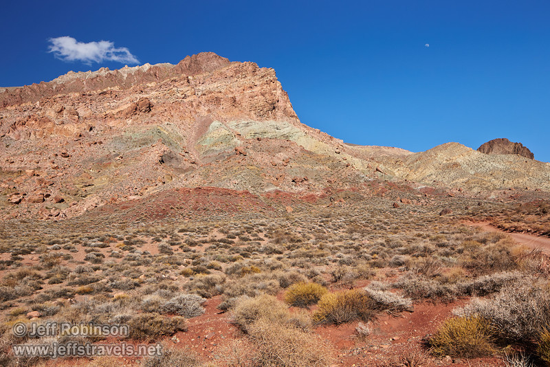 A foreground of desert plants in pale greens and yellows growing in dark red dirt along with Titus Canyon Road lead to a mountain with hues of greens, yellows, reds, and browns. The blue sky has the moon and one cloud over the mountain. (3/21/2013, Titus Canyon Road, Death Valley NP)<br /> TS-E24mm f/3.5L II @ 24mm f/10 1/200s ISO400