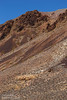 Pale green brush on the foreground slopes lead to sharper mountains under blue sky. Rock colors include yellows and reds. You can see how the red rock has broken off the mountain to form rock slides, and darker-green bushes grow around those slides. (3/21/2013, Titus Canyon Road, Death Valley NP)<br /> EF100-400mm f/4.5-5.6L IS USM @ 180mm f/8 1/500s ISO200