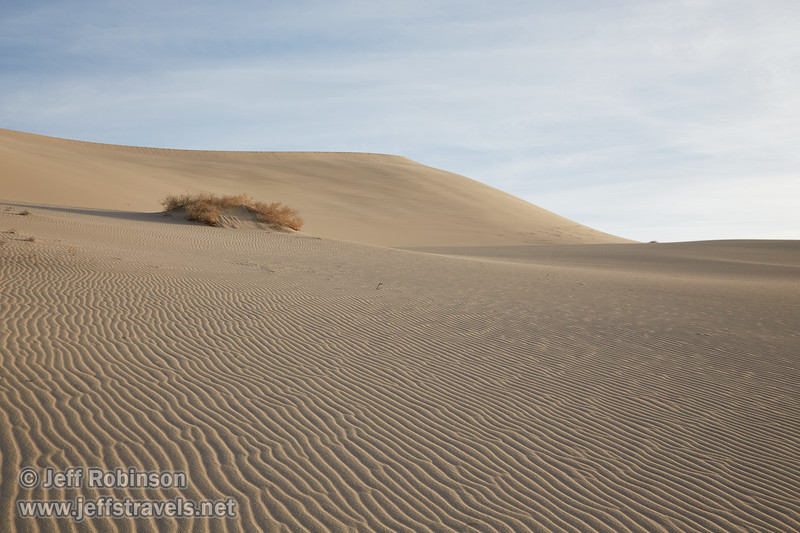 (3/10/2016, Eureka Dunes, Death Valley trip)<br /> EF24-105mm f/4L IS USM @ 40mm f/11 1/500s ISO400