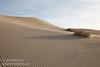 (3/10/2016, Eureka Dunes, Death Valley trip)<br /> EF24-105mm f/4L IS USM @ 35mm f/11 1/500s ISO400