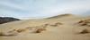 (3/8/2016, Eureka Dunes, Death Valley trip)<br /> EF24-105mm f/4L IS USM @ 28mm f/7 1/200s ISO200