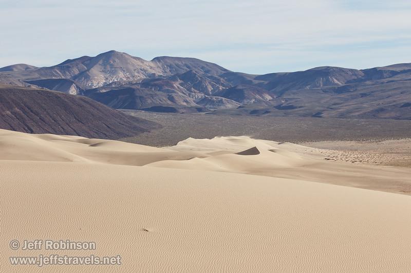 (3/10/2016, Eureka Dunes, Death Valley trip)<br /> EF100-400mm f/4.5-5.6L IS II USM @ 148mm f/8 1/640s ISO200