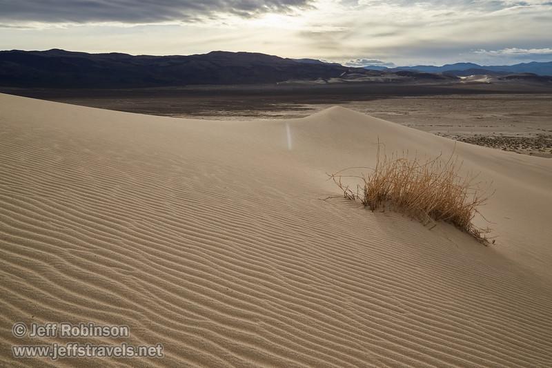 (3/8/2016, Eureka Dunes, Death Valley trip)<br /> EF24-105mm f/4L IS USM @ 24mm f/11 1/320s ISO100