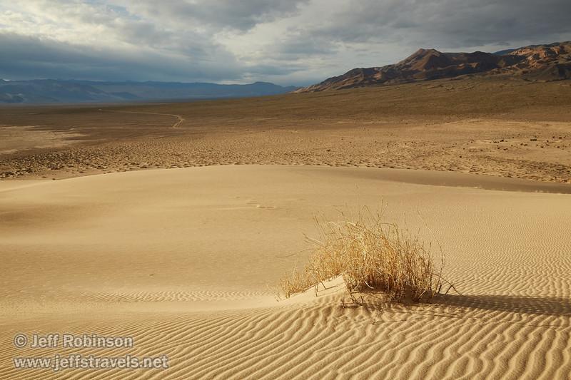 (3/8/2016, Eureka Dunes, Death Valley trip)<br /> EF24-105mm f/4L IS USM @ 32mm f/11 1/400s ISO320