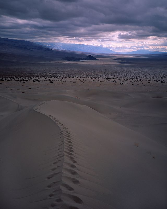 A four mile cross country hike takes one to the Panamint Dunes in the northern extreme of Panamint Valley.