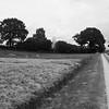 Weg von Guckelsby