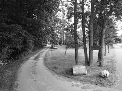 Stubberholz