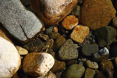 riverrock16