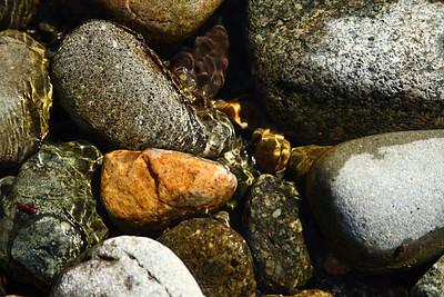 riverrock11