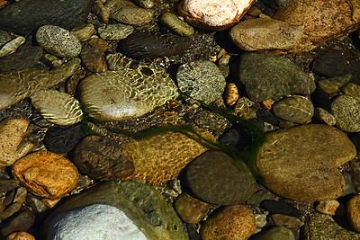 riverrock14