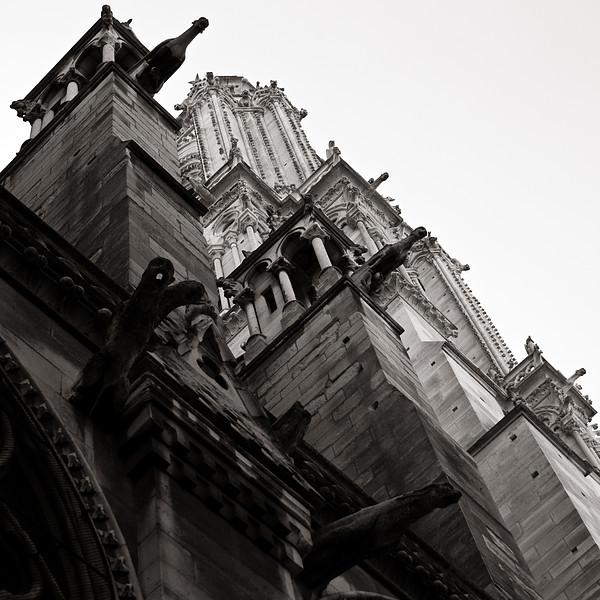 <em>Notre Dame</em> Copyright 2011 Ken Walsh