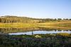 Bison Lake at sunrise