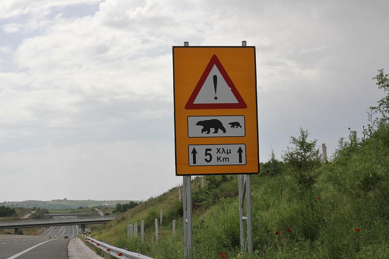 Bear passing warning sign, Konitsa-Siatista