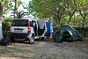 Botanising trip with Kees Jan van Zwienen, Camping in Mistras, Peloponnese
