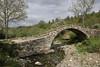 Ancient bridge, Monodendri-Kipi-Konitsa