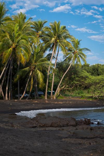 Punalu'u, the black sand beach