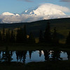 Denali (Mt. McKinley) reflected in Nugget Pond