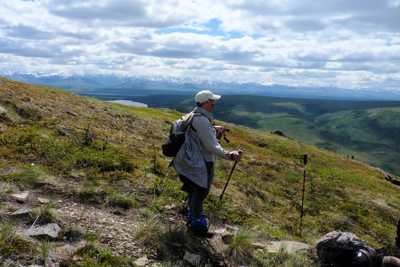 Jeane practices equanimity as we stop for wildflowers...repeatedly...over and over again...