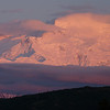 Denali, bathed in alpenglow after midnight.
