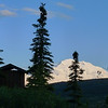 Camp Denali chooses to situate all of the latrines so they have a view of The Mountain.